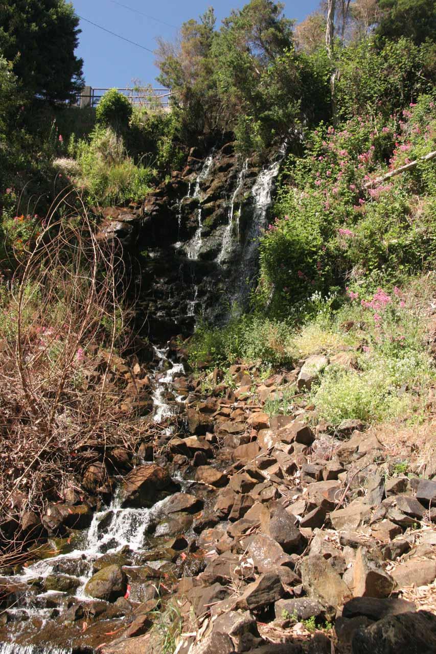Last look at Oldaker Falls before we headed back to the car park