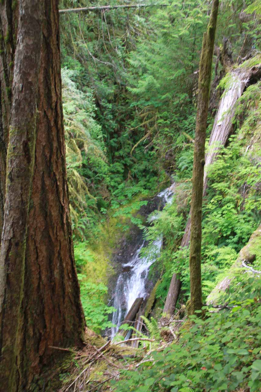 Partial view of some lower tiers of Marymere Falls