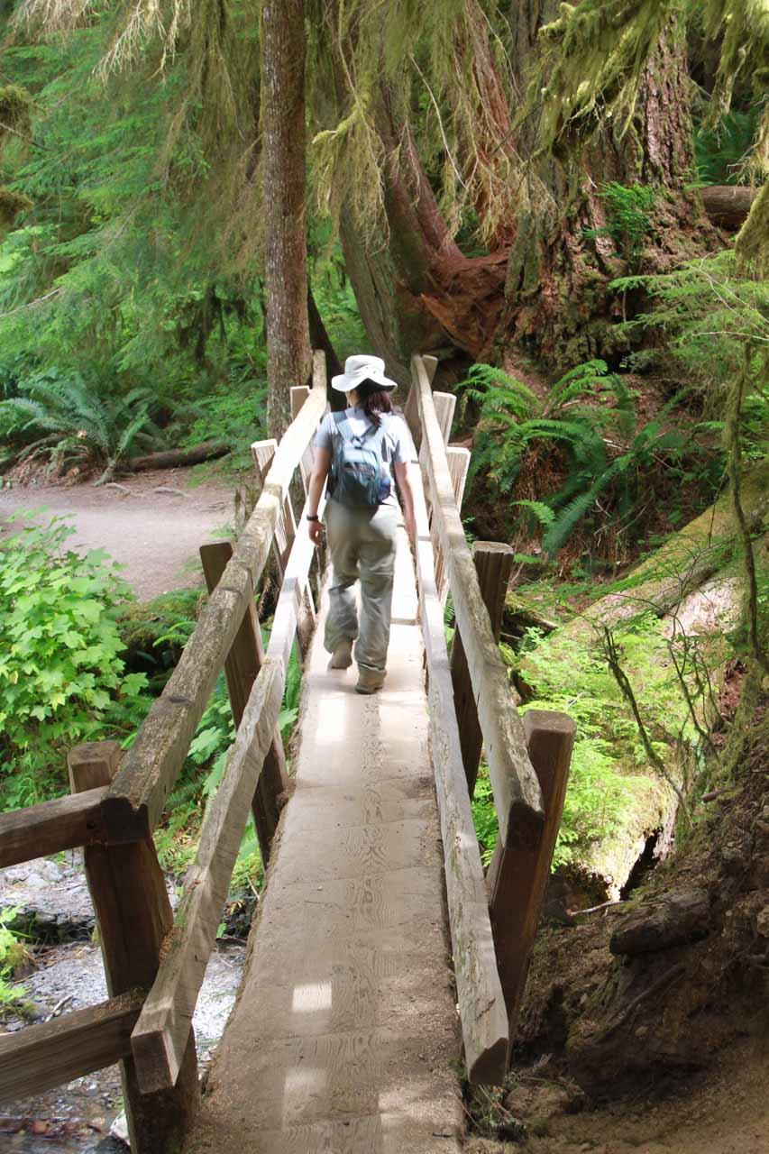 Traversing the narrow log bridge