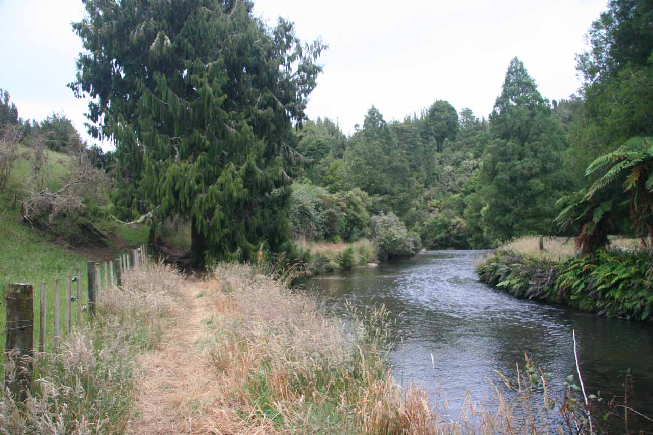 Hiking alongside the Omaru Stream
