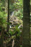 Onomea_012_03092007 - Boulder Creek Falls deep inside the botanical garden