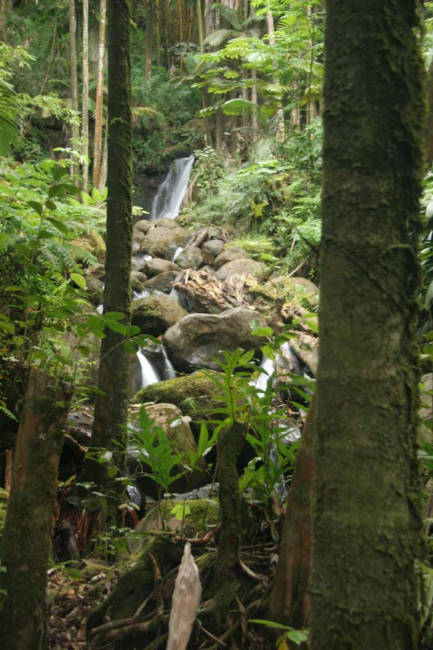 Boulder Creek Falls deep inside the botanical garden