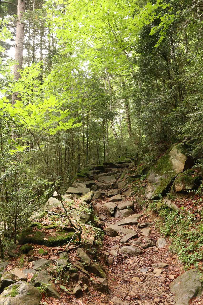 Parts of the trail to Cascada de Cotatuero was a bit on the rocky side