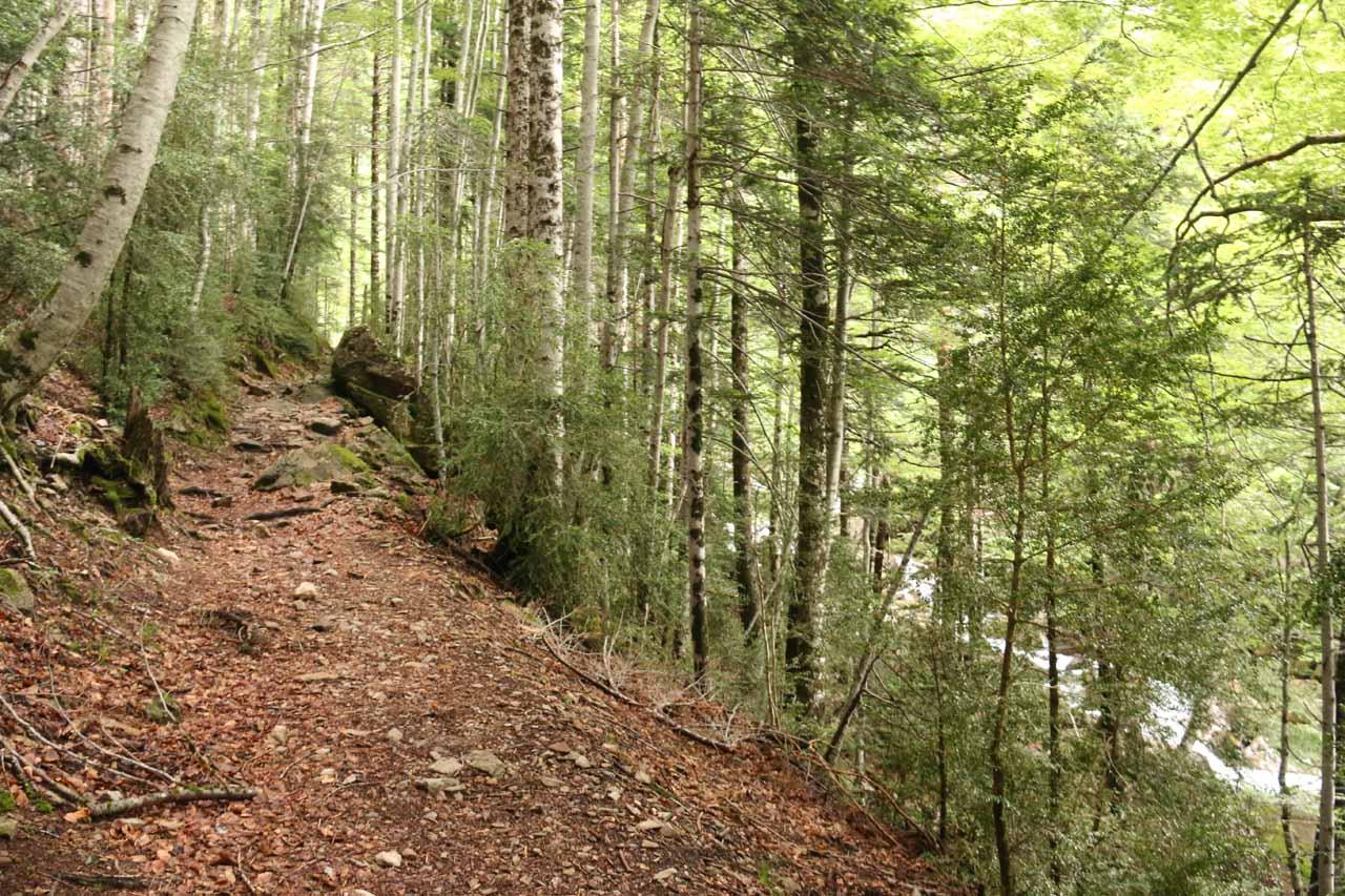 The waterfall trail followed along the Barranco de Cotatuero