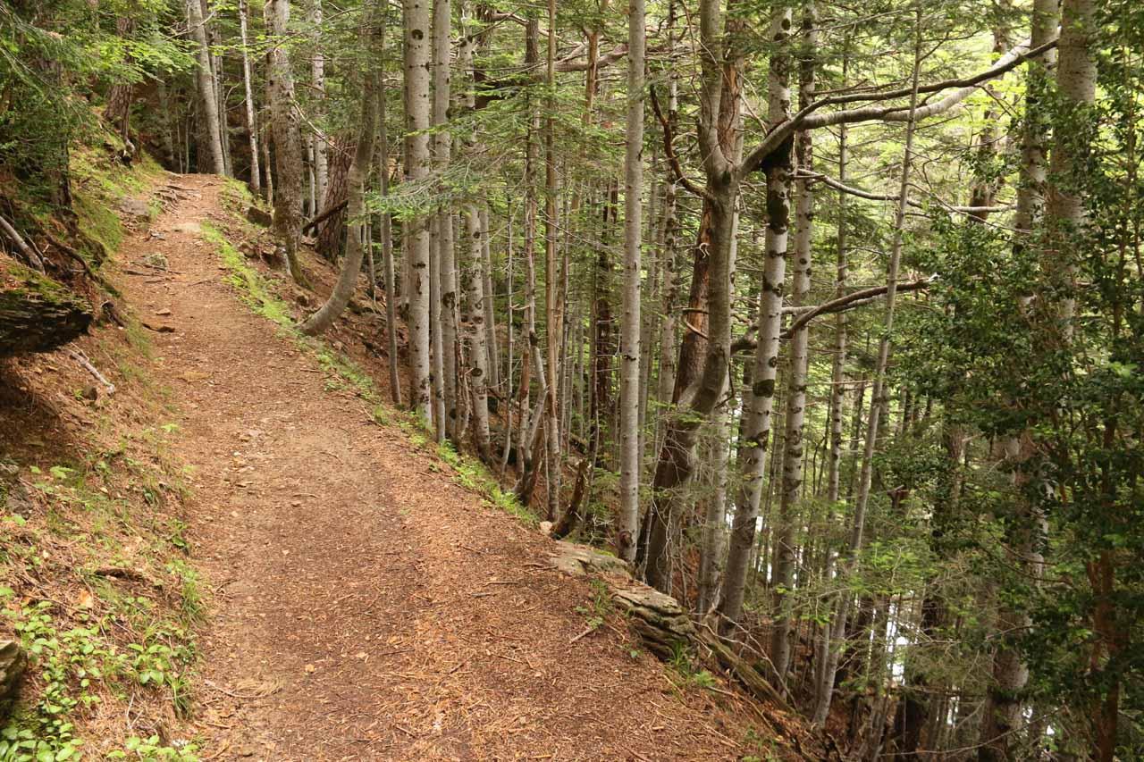 The trail continued to climb alongside the Barranco de Cotatuero