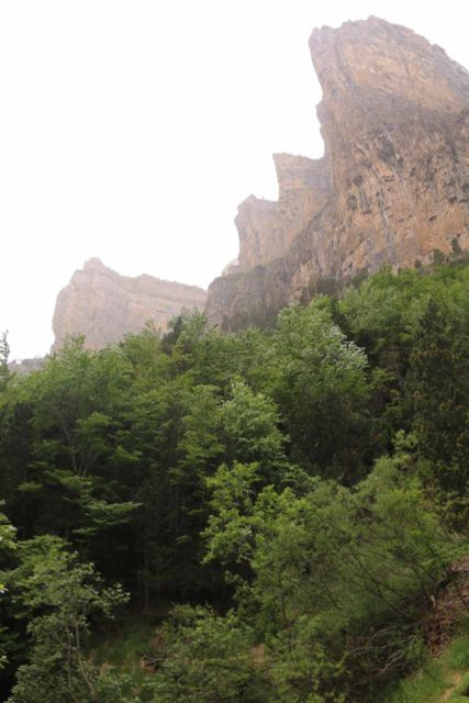 Ordesa_080_06162015 - As the tree cover started to chin out on the ascent, I started to get this view of the cliffs harboring the Faja Racón, Circo de Carriata, and Clavijas de Cotatuero