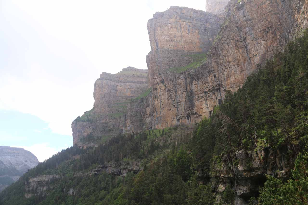 Looking along the nearby cliffs of Faja Blanquera and Faja Racón