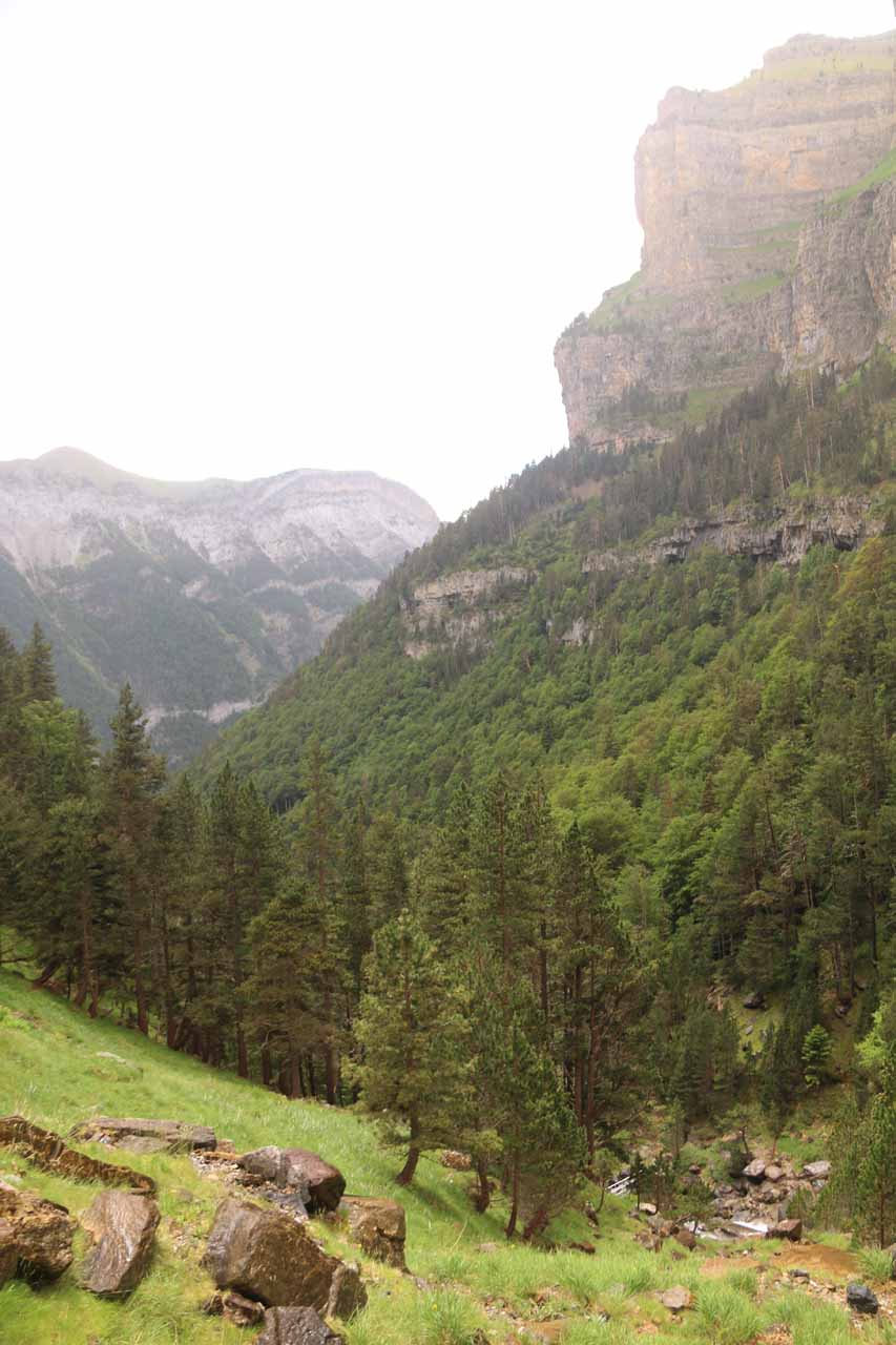 Context of the cliffs and the Ordesa Valley looking downhill from around the bridge area