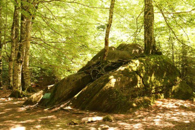 Ordesa_928_06172015 - The curious la Piedra de los 7 Faus