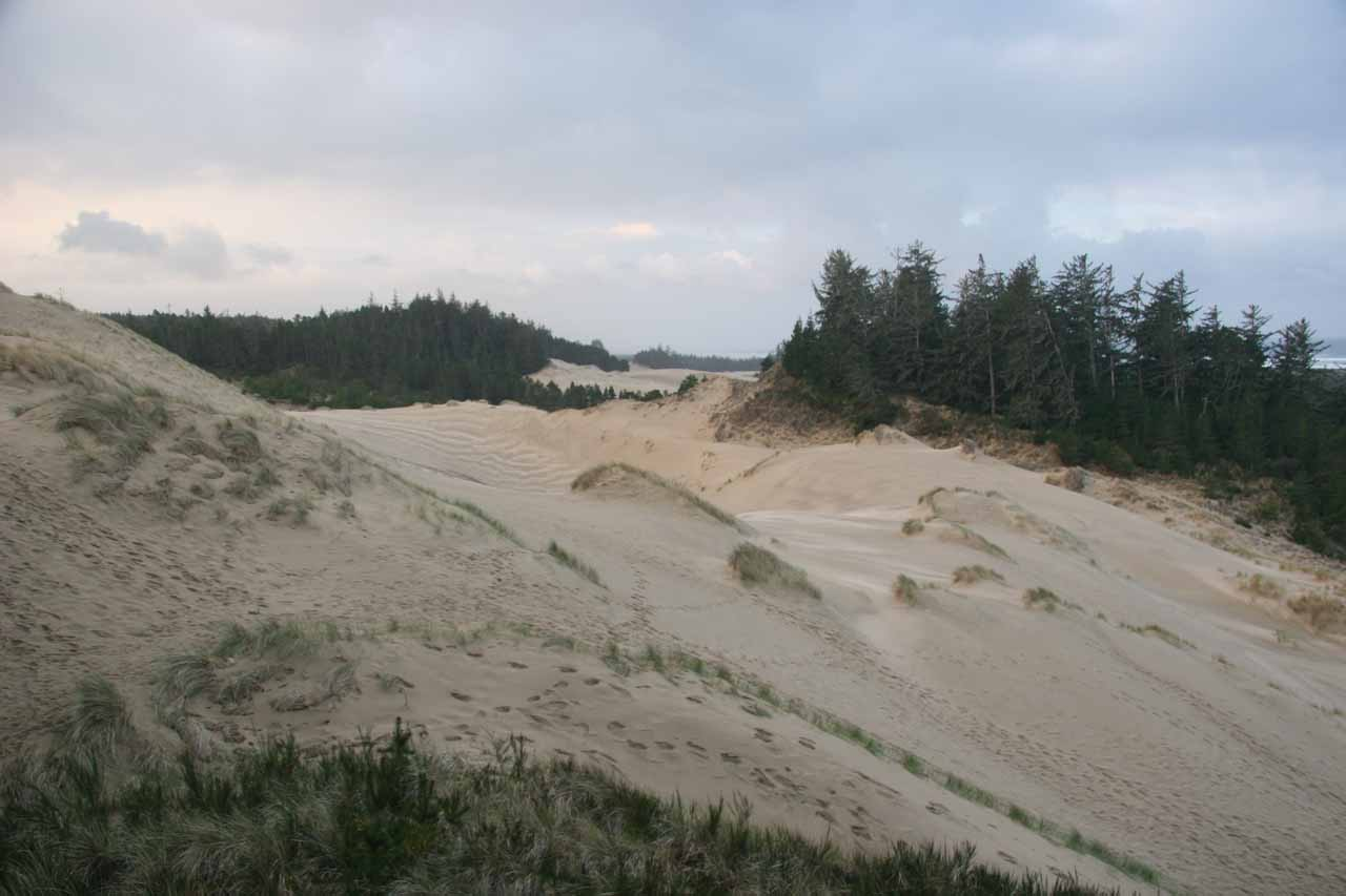 Oregon Dunes in the morning