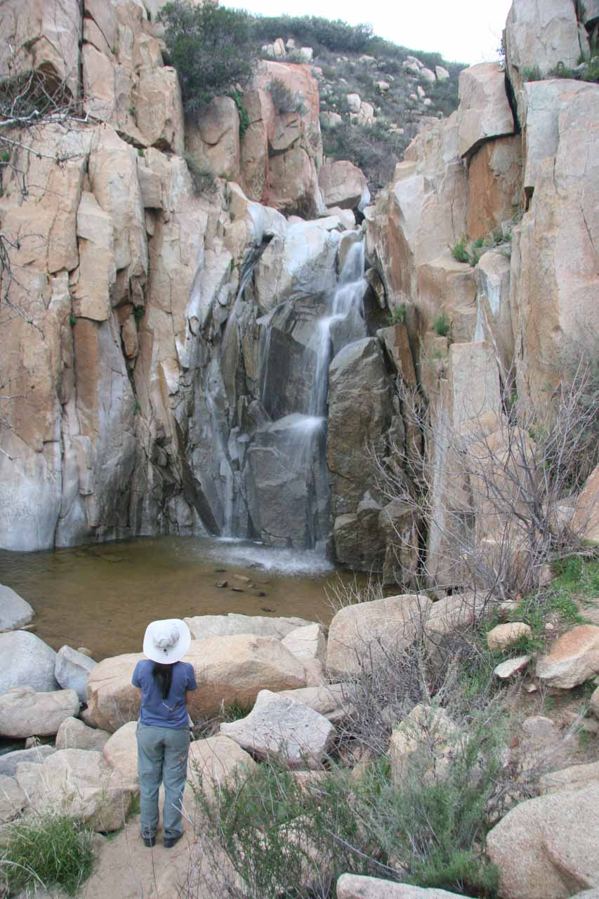 Julie checking out Ortega Falls in 2009