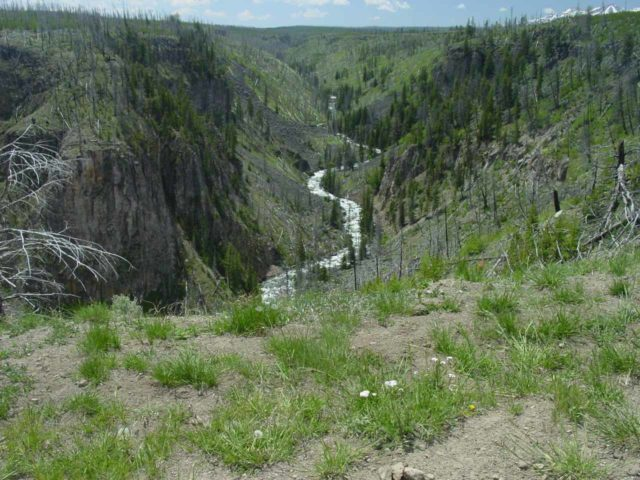Osprey_Falls_007_06232004 - Looking into Sheepeater Canyon from the Osprey Falls Trail