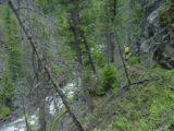 Osprey_Falls_011_06232004
