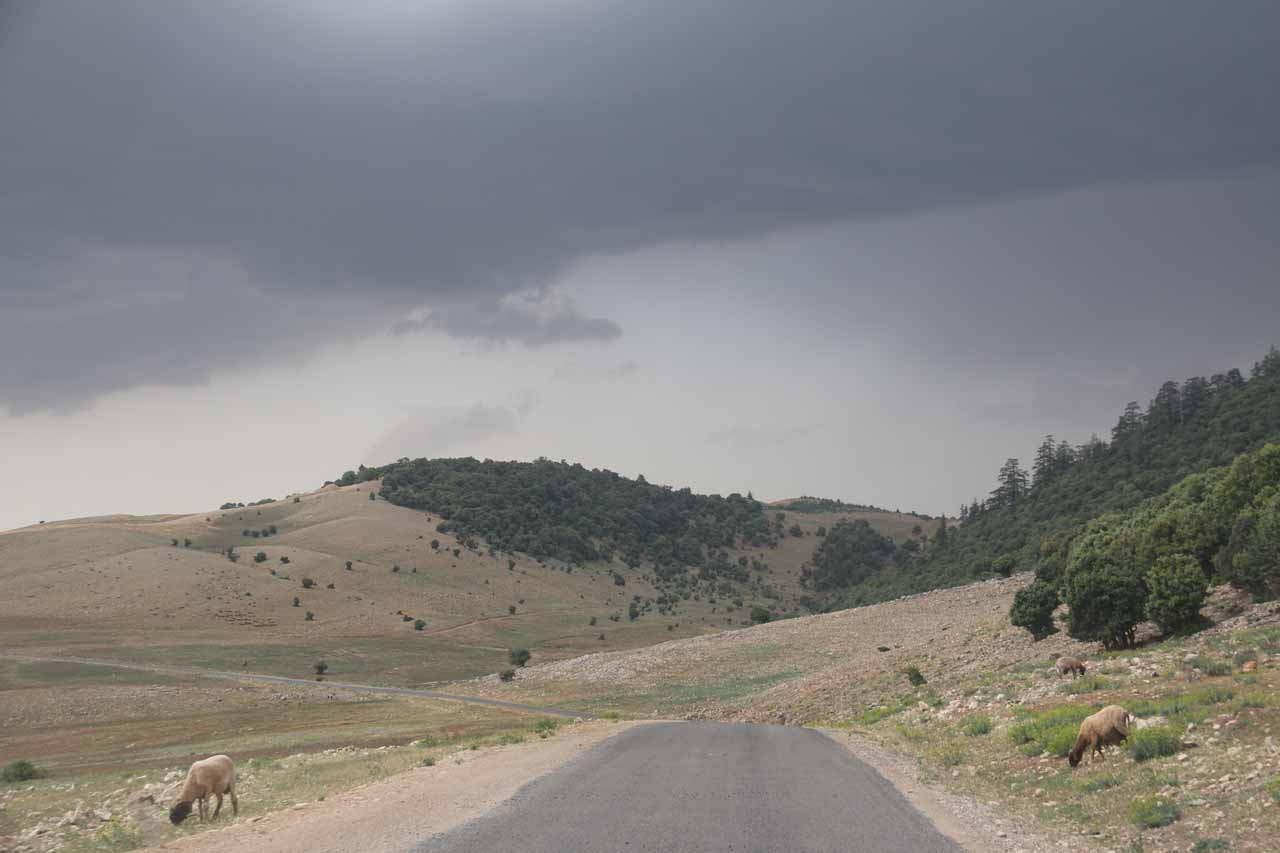 Threatening thunderstorms as we were headed north through the forest towards Fes