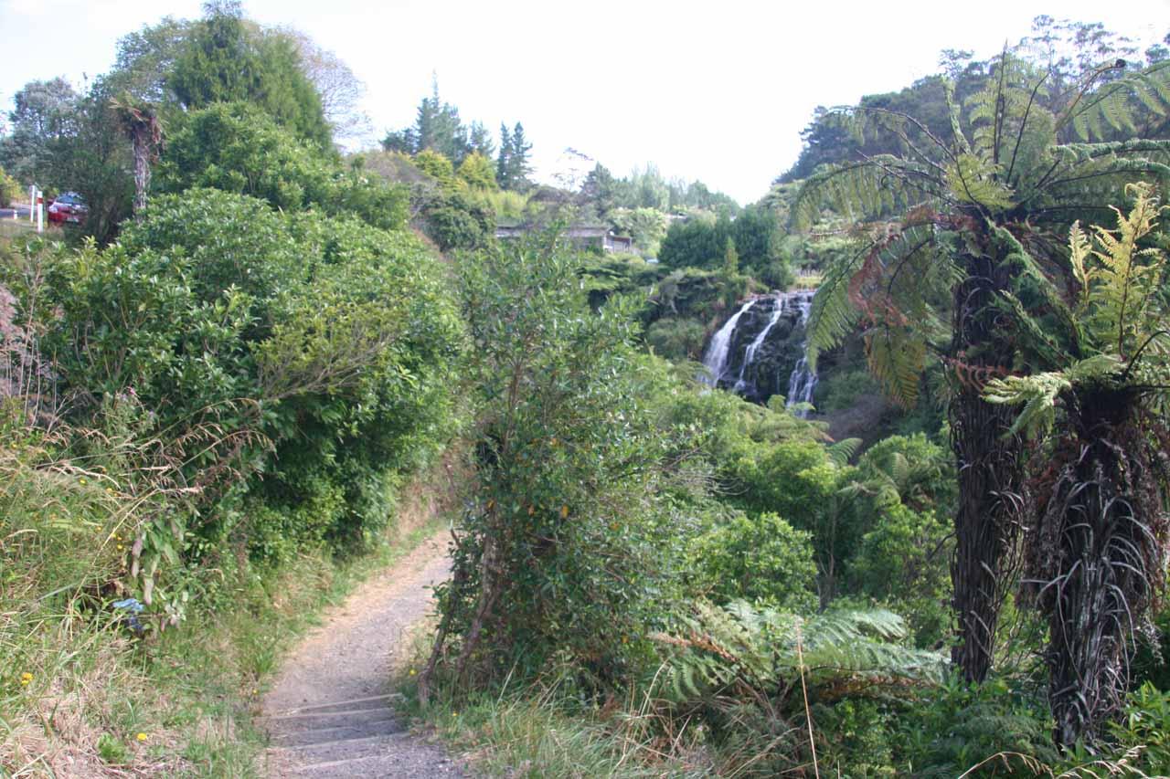 The walk to the base of Owharoa Falls