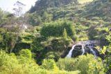 Owharoa_Falls_035_01072010