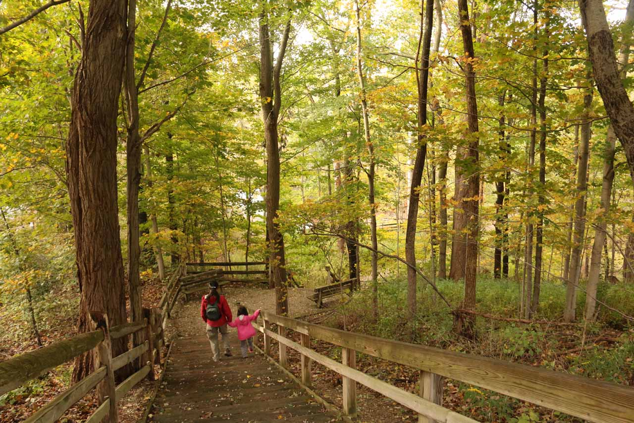 Julie and Tahia descending the steps towards the main lookout for Paine Falls