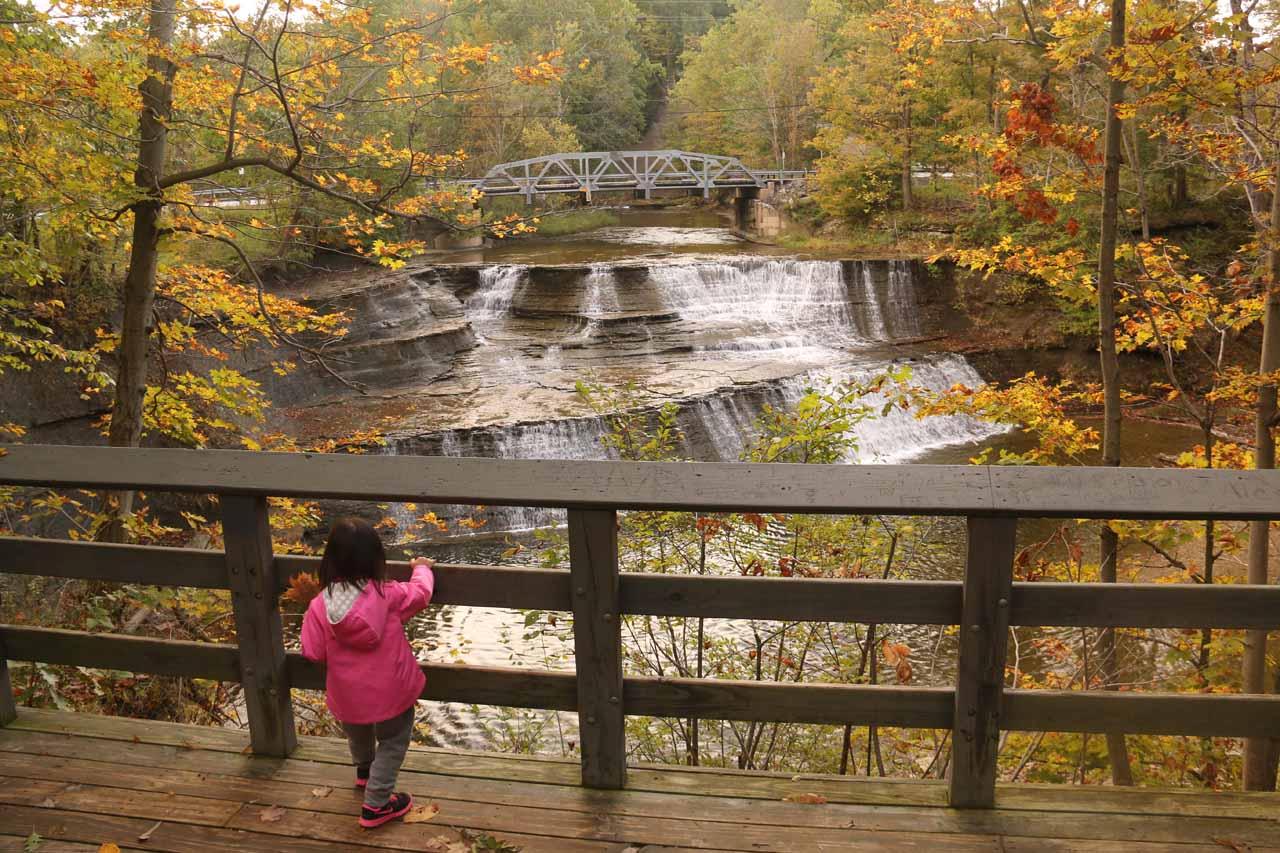 Tahia enjoying the main lookout for Paine Falls