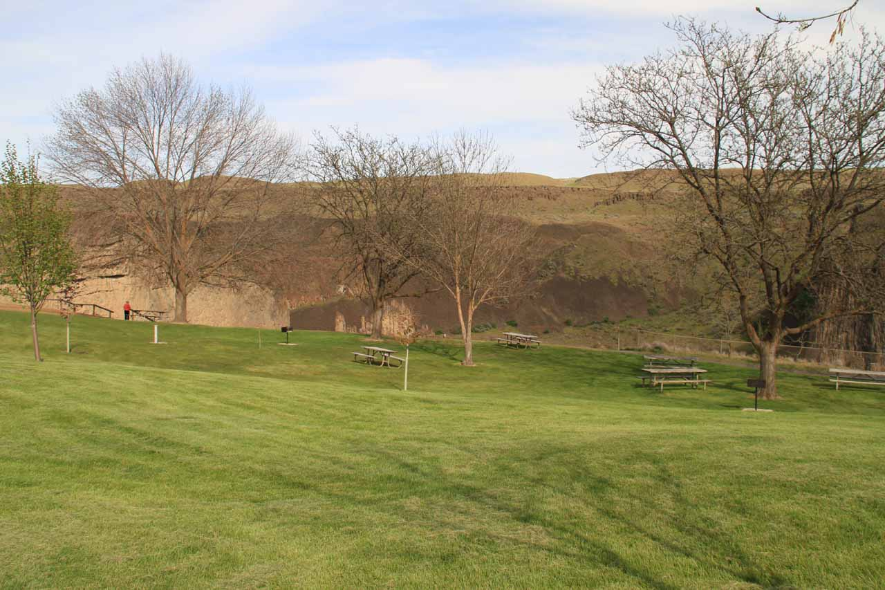 Picnic tables in a lawn area by the main overlook