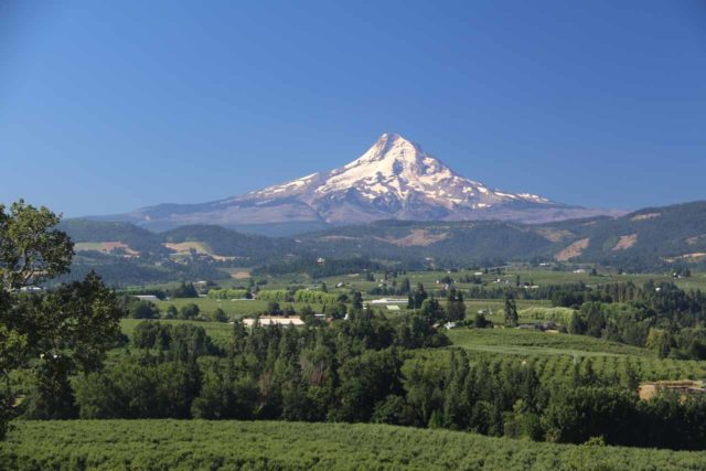Panorama_Point_Park_011_08182017 - Roughly an hour's drive from White River Falls State Park was the town of Hood River, where nearby was the Panorama Point Park, which yielded this beautiful view of the northeast face of Mt Hood