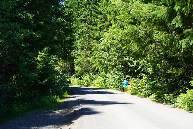 Panther_Creek_Falls_066_06242021 - Following the road towards the Panther Creek Falls Trail