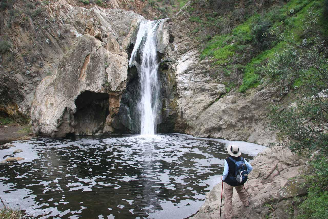 Back at Paradise Falls