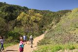 Paradise_Falls_071_03242019 - During the day of our hike to Paradise Falls via Wildwood Canyon in March 2019, there were quite a few people out and about
