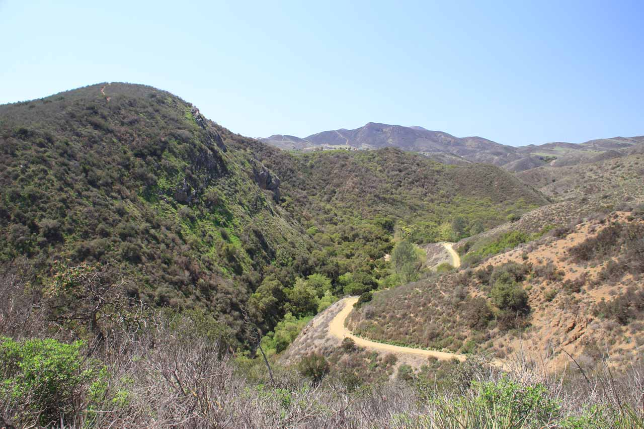 Looking into Wildwood Canyon from the official falls trail