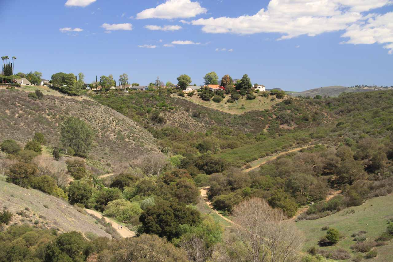 Looking over to the suburban homes high up above Wildwood Canyon