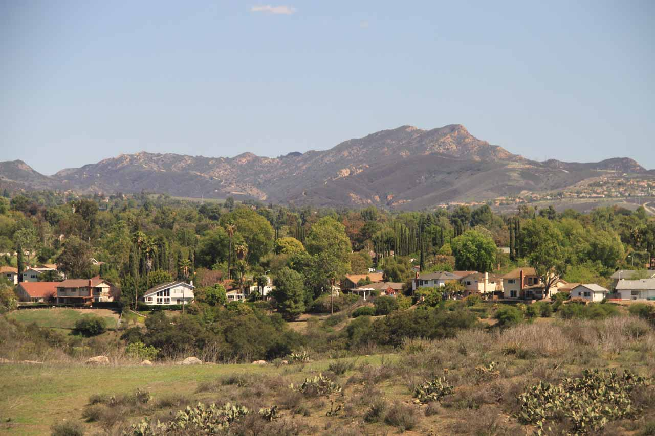 Looking out over the attractive suburban homes fringing Wildwood Canyon