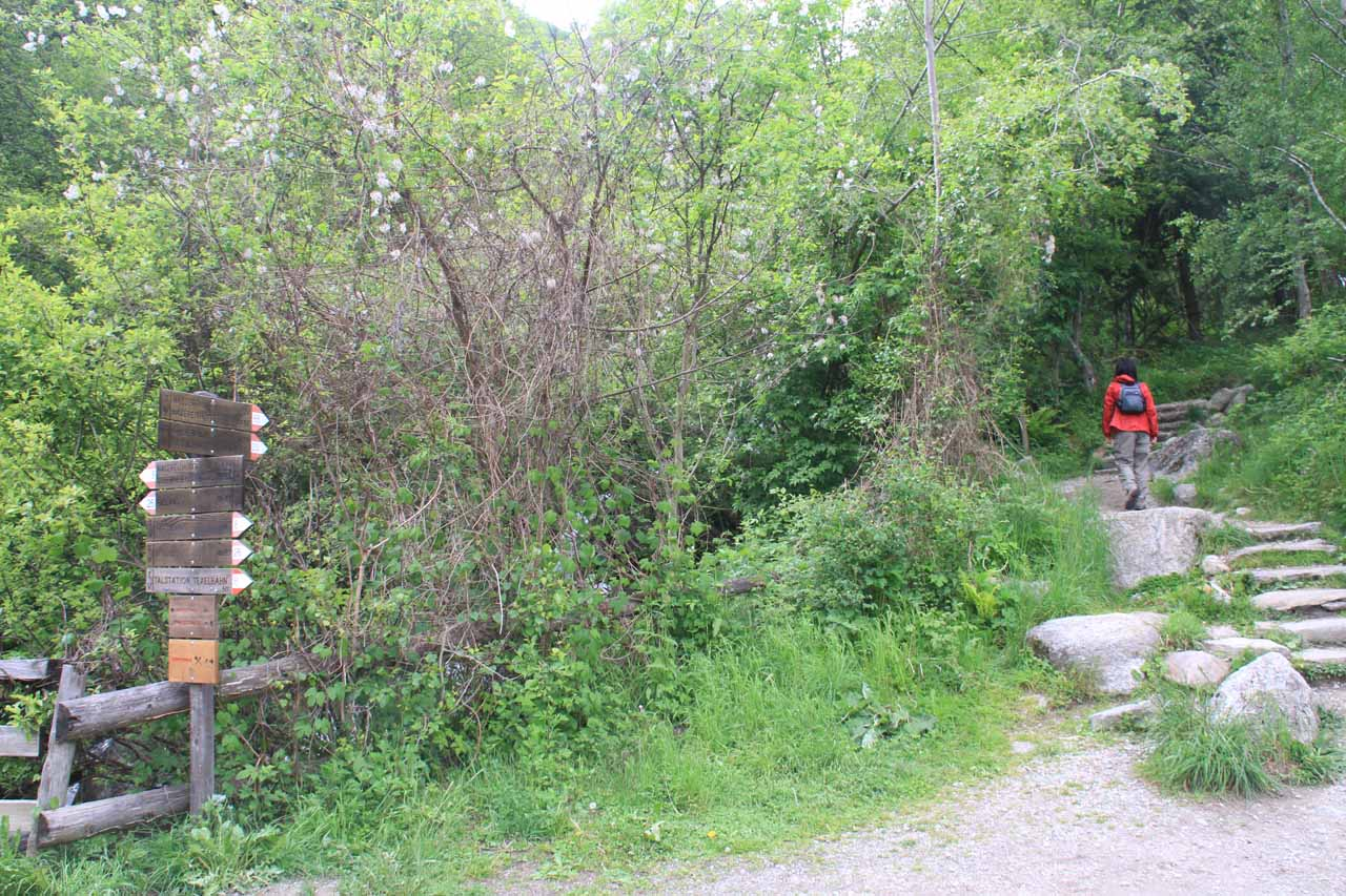 Julie on the signposted trail next to the bridge