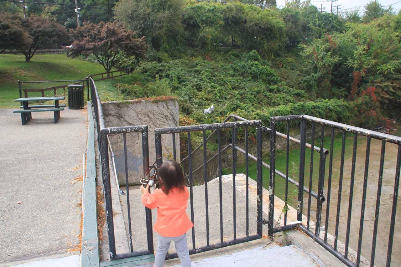 Our daughter trying to figure out how to get past this locked gate