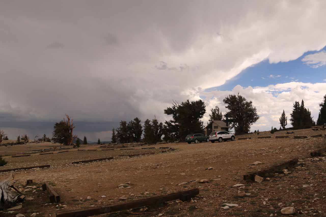 Looking towards the edge of the thunderstorm front at the Patriarch Grove of the Ancient Bristlecone Pine Forest