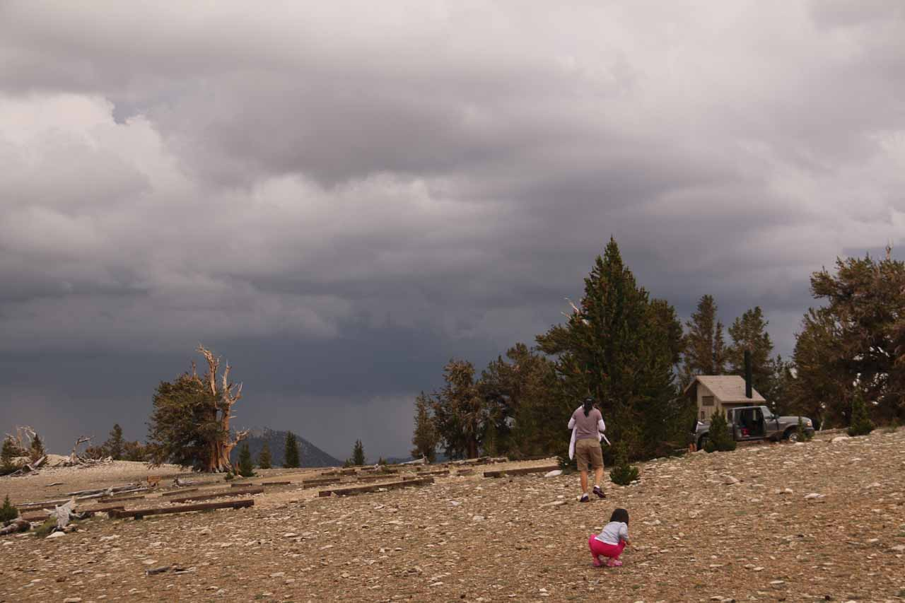 Julie and Tahia headed back to the car as the dark clouds and lightning were really closing in on us