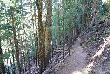 Paulina_Falls_010_06272021 - Descending a narrow trail en route to Paulina Falls