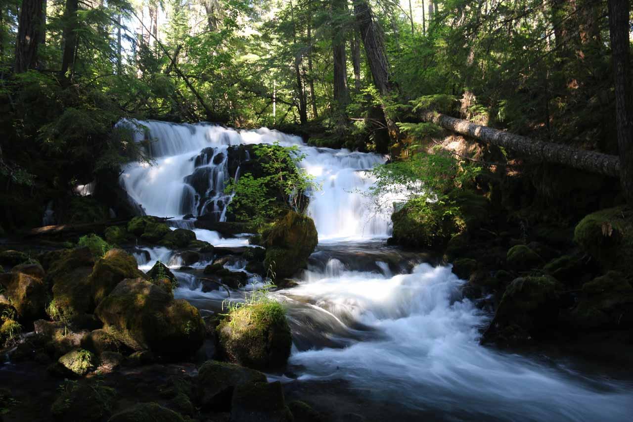 Pearsony Falls (or Pearsoney Falls) in Prospect State Park, Oregon