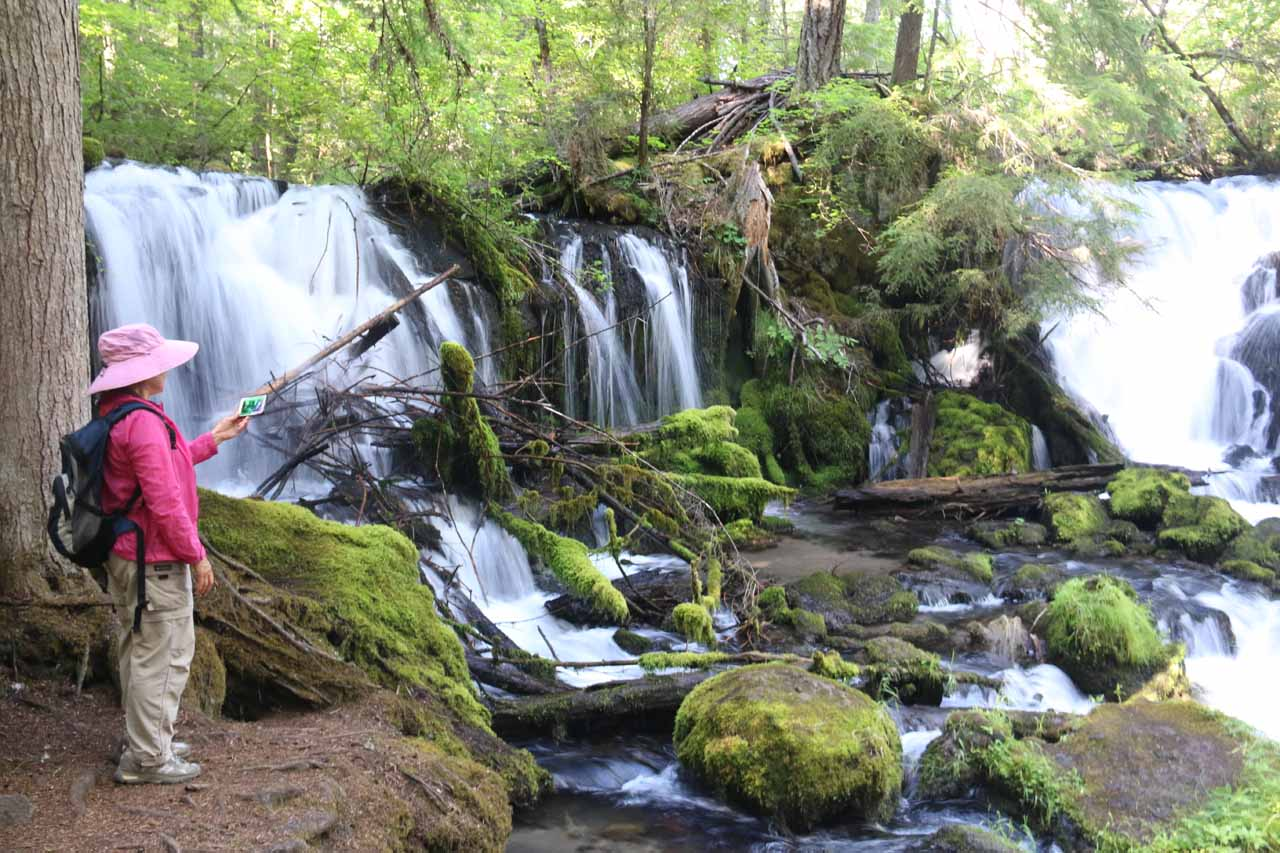 After roughly five minutes on the trail, we arrived at the wide Pearsony Falls