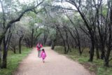 Pedernales_Falls_008_03102016 - Julie and Tahia flanked by very wet trees on the way to Pedernales Falls