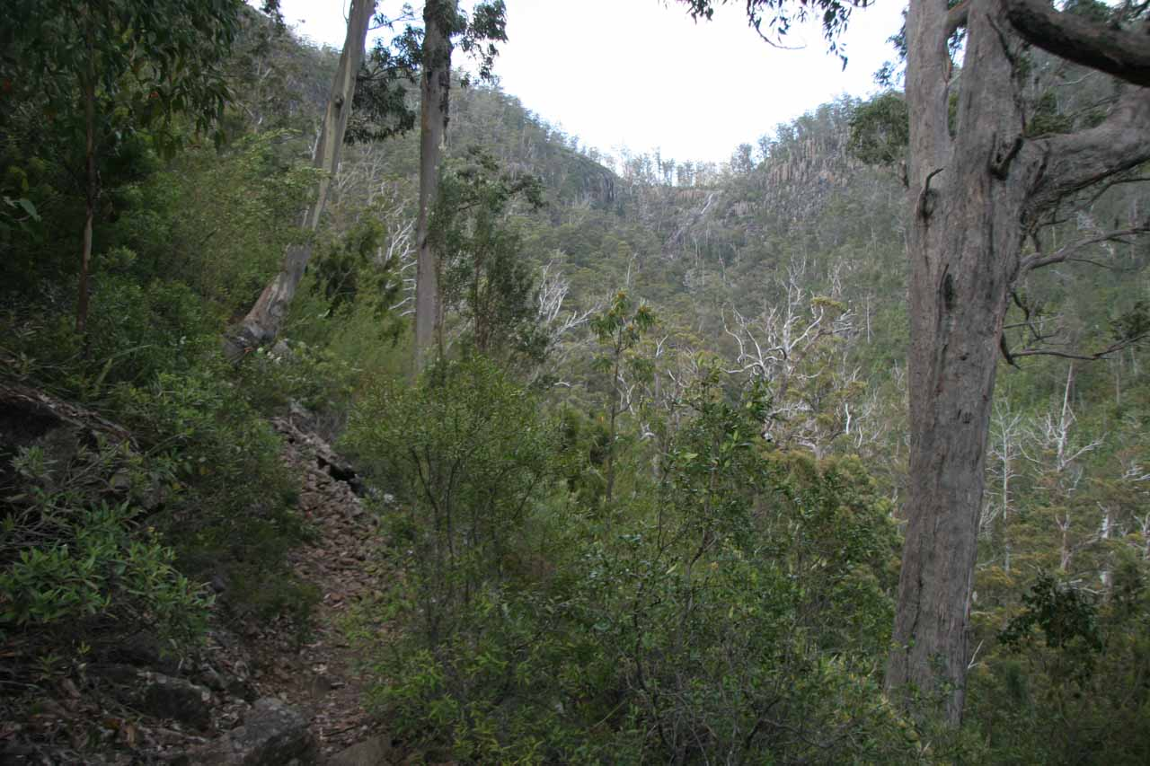 The narrow track on the left with Slippery Falls way in the distance amongst the dry trees towards the top of the photo