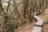 Pencil_Pine_Knyvet_Falls_083_11302017 - Heading back along the boardwalk after having my fill of Knyvet Falls on my late November 2017 visit