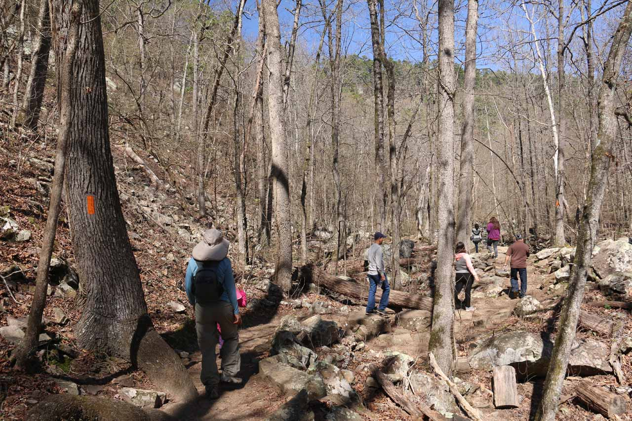 Following the orange hashes to remain on the Cedar Falls Trail