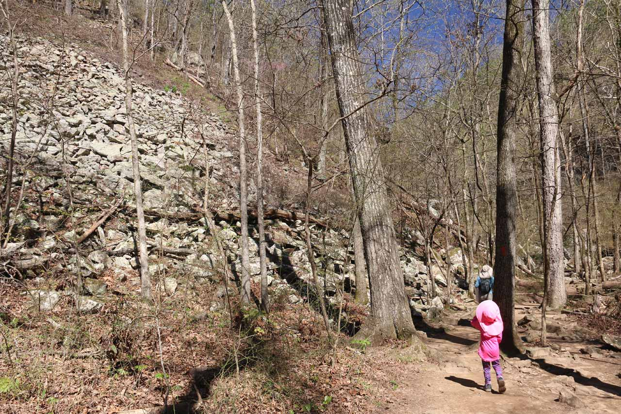 An interesting boulder slope besides the Cedar Falls Trail
