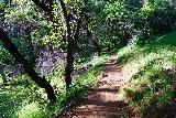 Phantom_Falls_314_04092021 - Descending into the ravine towards Hollow Falls