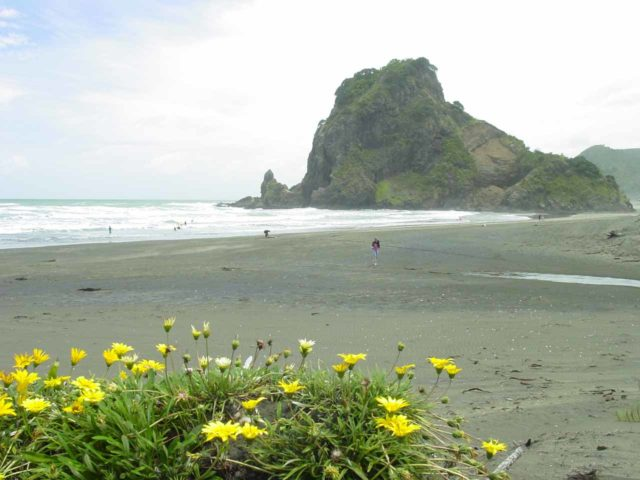 Piha_Beach_021_12022004 - Piha Beach, which was quiet during my visit in early December 2004