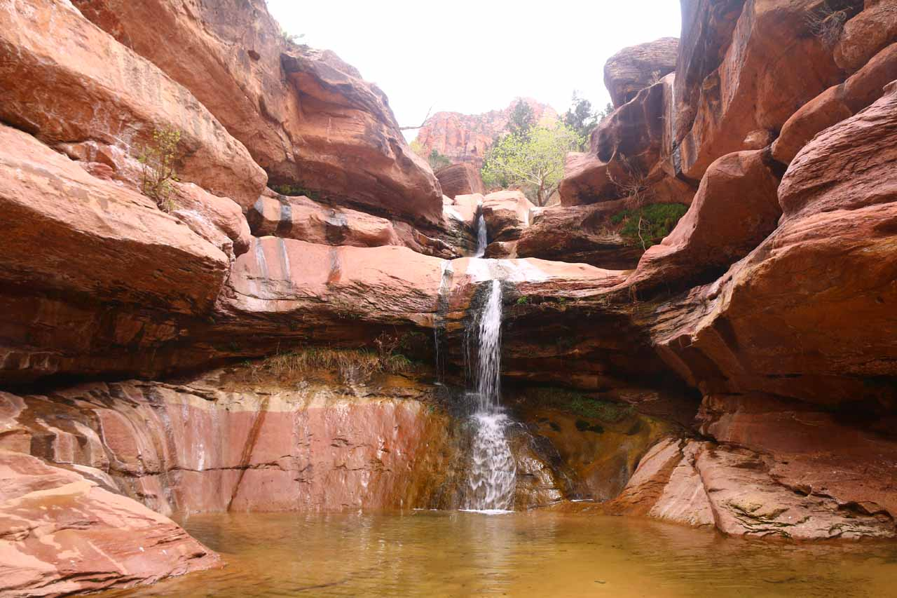 The Pine Creek Waterfall in Zion National Park