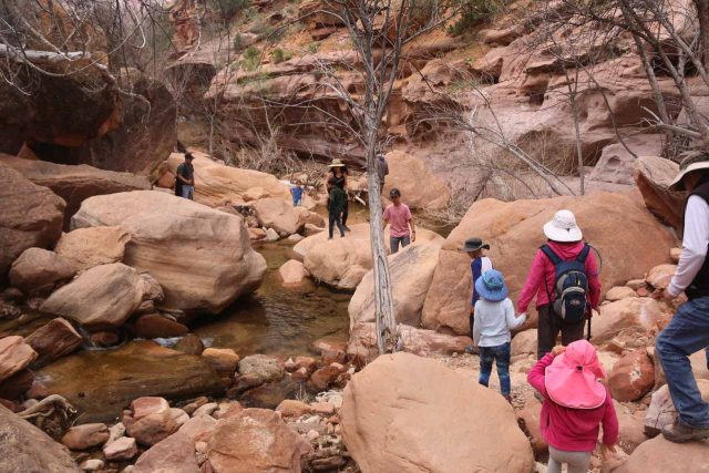 Pine_Creek_Falls_180_04042018 - The group scrambling back towards the UT9 just as quite a few more people started making their way to the Pine Creek Falls