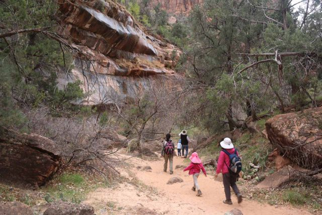 Pine_Creek_Falls_182_04042018 - The group headed back to the UT9 along the sandy wash after having our fill of the Pine Creek Falls and getting by the tricky obstacles