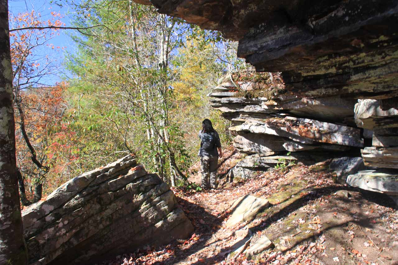 Trail passing besides more rocks and alcoves