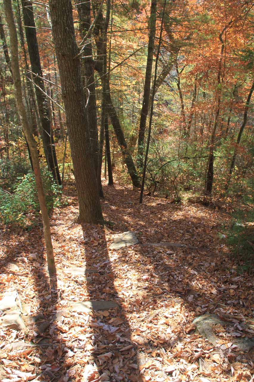 Looking down at the steep descent to the top of Lower Piney Falls
