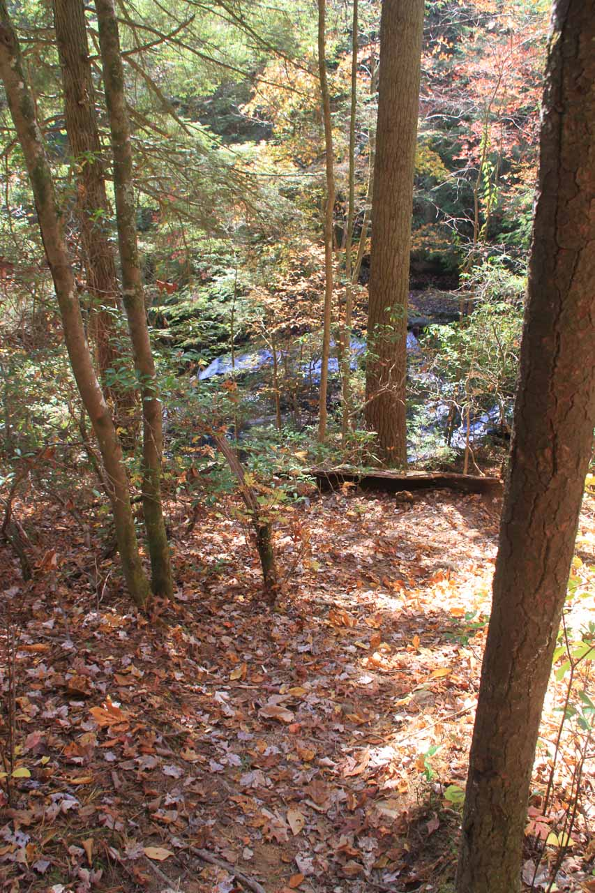 The steep descent to Lower Piney Falls